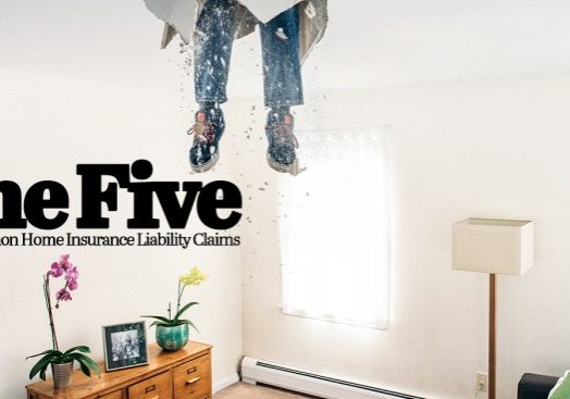 The-Five-Most-Common-Home-Insurance-Liability-Claims_